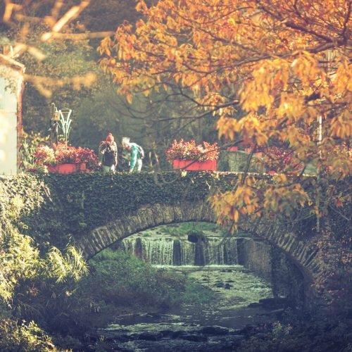 roquefere-2019-11-pont-riviere-rando-cr-vincent-photographie-adt-aude