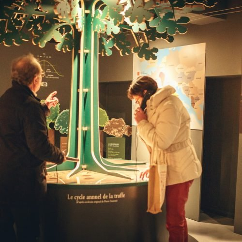 villeneuve-minervois-2019-01-musee-truffe-visite-cr-vincent-photographie-adt-aude